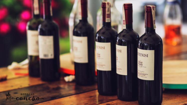 5 beneficios del vino tinto en ayunas que debes conocer