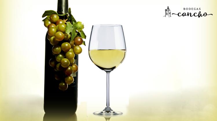 diferencias-entre-vino-tinto-y-vino-blanco